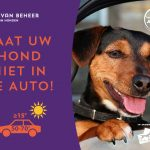 hond-in-auto-stopper-a5-liggend-ned