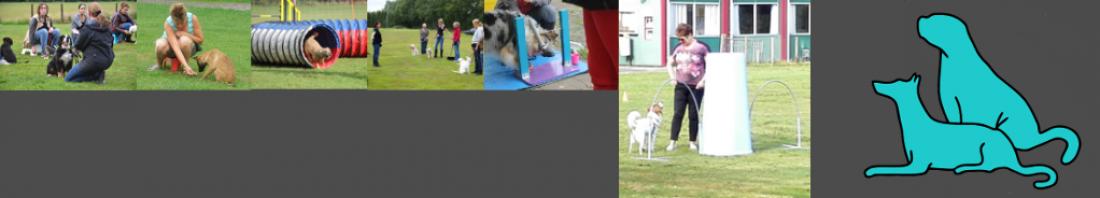 Hondenschool Zuid Oost Groningen